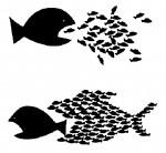 little-fish-eat-big-fish-small